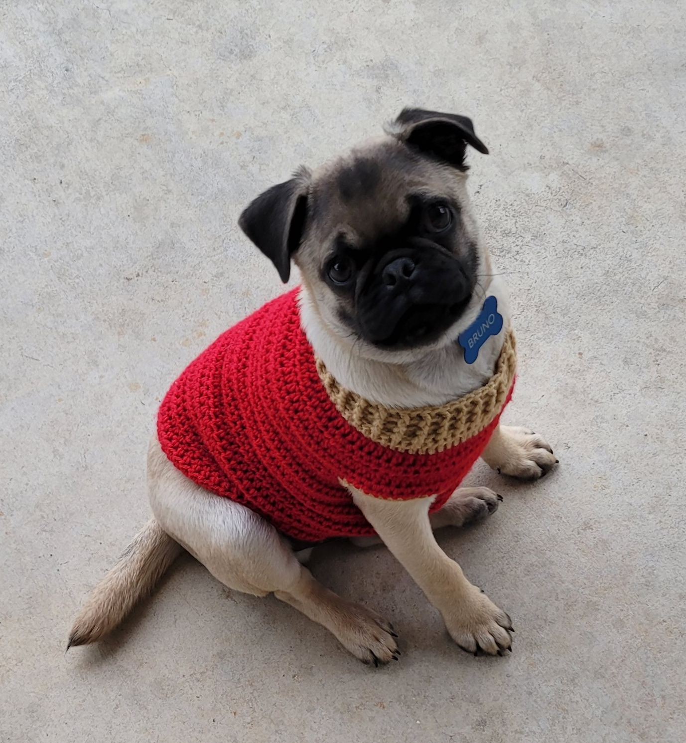 Bruno Sweater Small