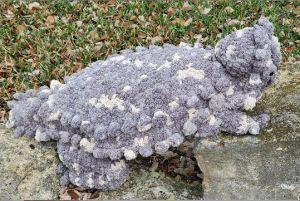 horny toad cushion